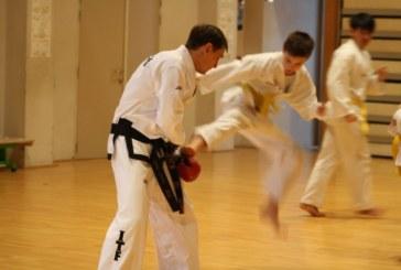 Le Taekwon-Do expliqué par M. Kampf, champion de Belgique à deux reprises