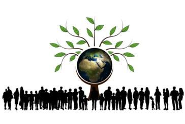 Un collège plus vert et plus éco responsable