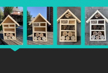 Construire un hôtel pour les insectes